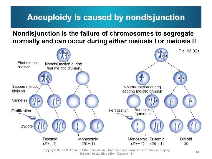 Aneuploidy is caused by nondisjunction Nondisjunction is the failure of chromosomes to segregate normally