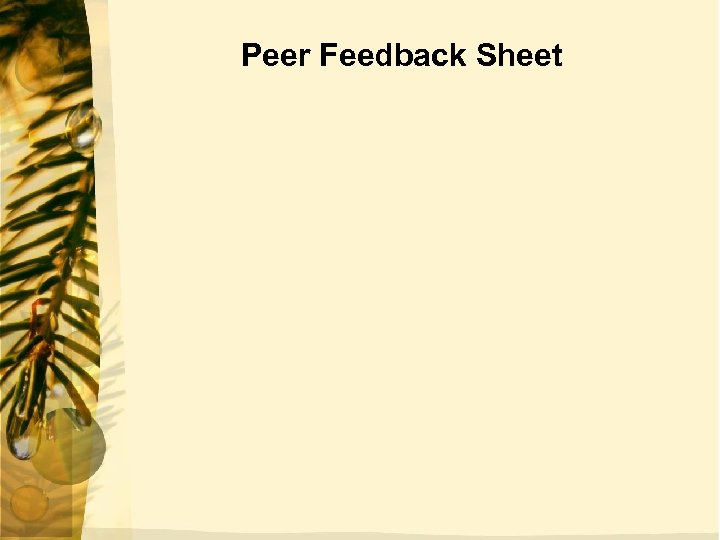 Peer Feedback Sheet
