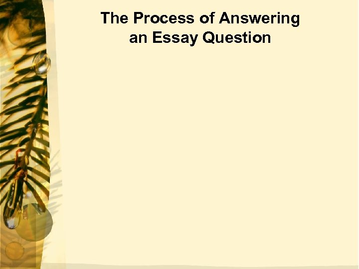 The Process of Answering an Essay Question