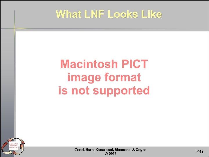 What LNF Looks Like Good, Harn, Kame'enui, Simmons, & Coyne © 2003 111