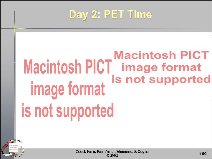 Day 2: PET Time Good, Harn, Kame'enui, Simmons, & Coyne © 2003 169