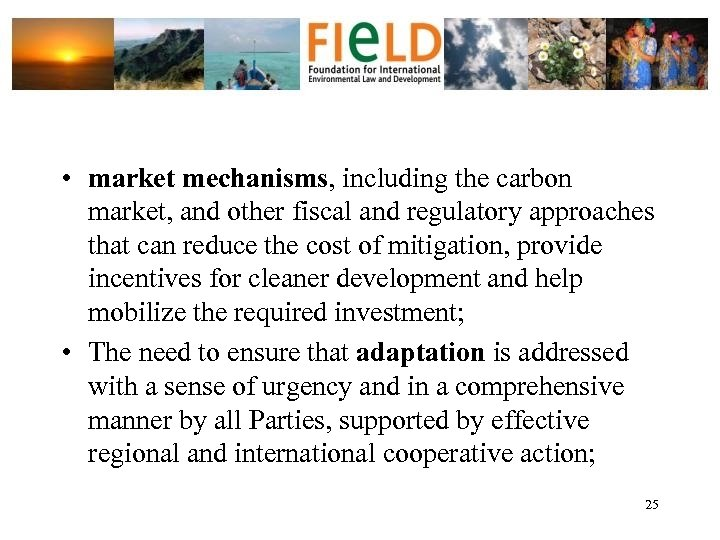 • market mechanisms, including the carbon market, and other fiscal and regulatory approaches