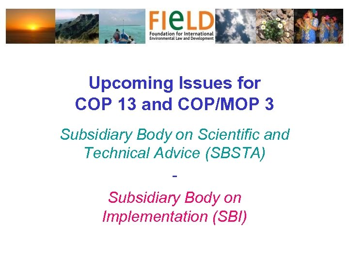 Upcoming Issues for COP 13 and COP/MOP 3 Subsidiary Body on Scientific and Technical