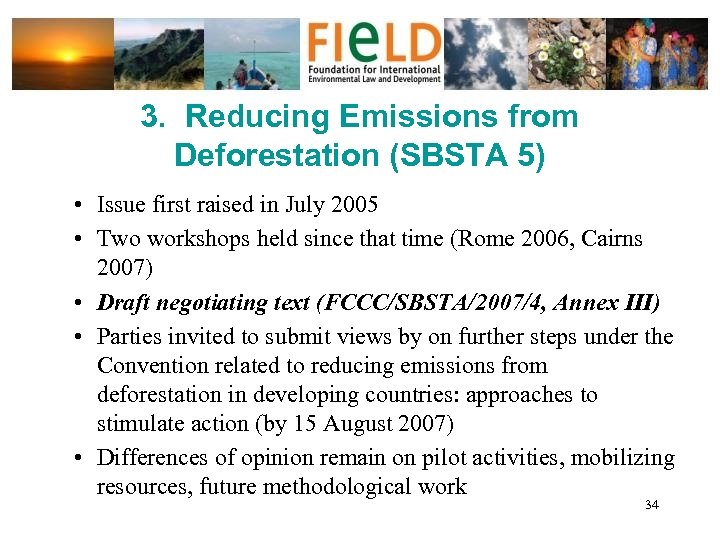 3. Reducing Emissions from Deforestation (SBSTA 5) • Issue first raised in July 2005