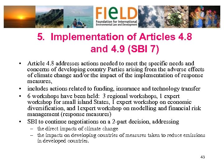 5. Implementation of Articles 4. 8 and 4. 9 (SBI 7) • Article 4.