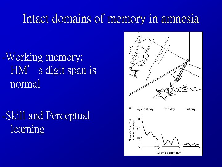 Intact domains of memory in amnesia -Working memory: HM's digit span is normal -Skill
