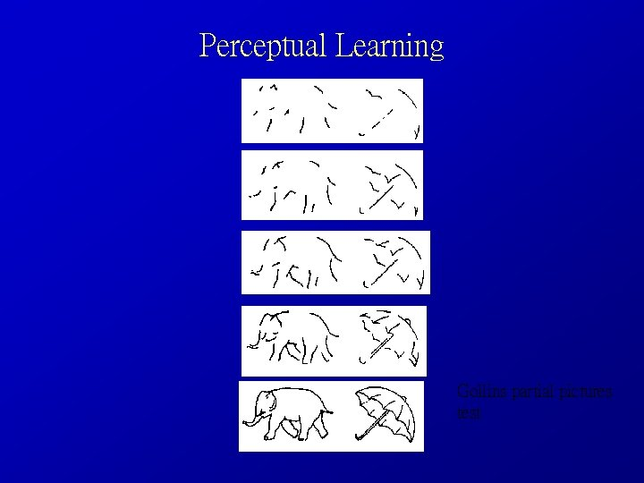 Perceptual Learning Gollins partial pictures test