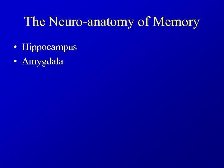 The Neuro-anatomy of Memory • Hippocampus • Amygdala