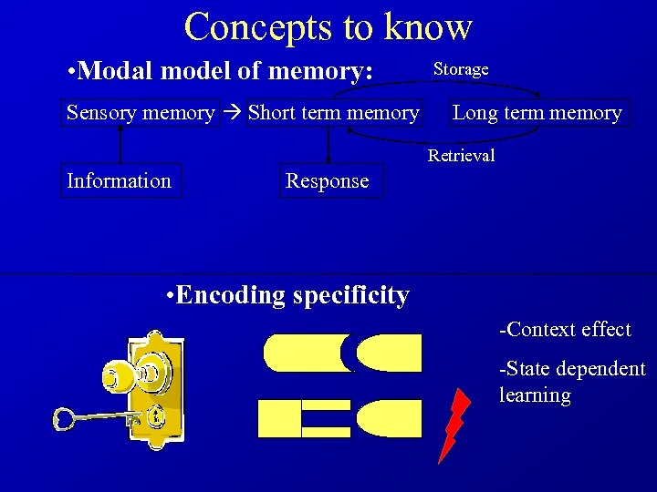 Concepts to know • Modal model of memory: Storage Sensory memory Short term memory
