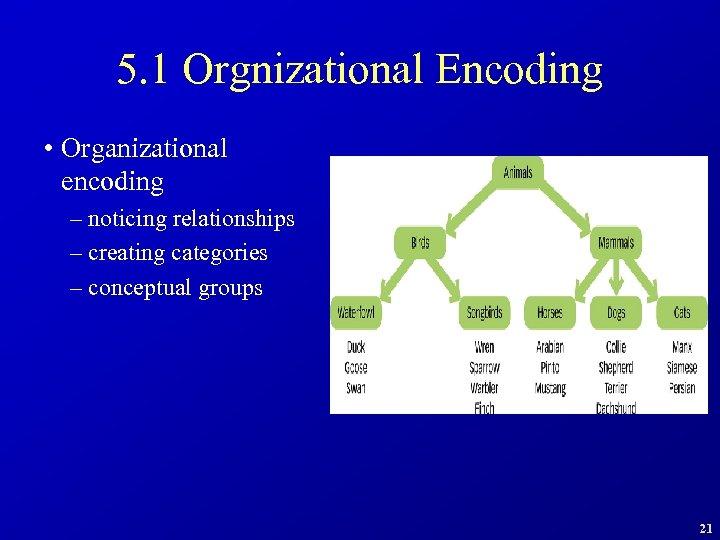 5. 1 Orgnizational Encoding • Organizational encoding – noticing relationships – creating categories –