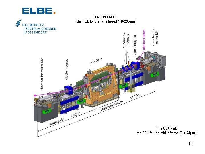 The U 100 -FEL, the FEL for the far infrared (18 -250μm) The U
