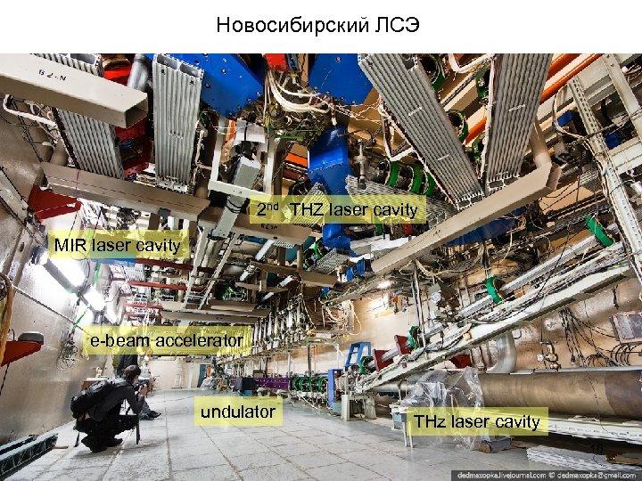 Новосибирский ЛСЭ 2 nd THZ laser cavity MIR laser cavity e-beam accelerator undulator THz