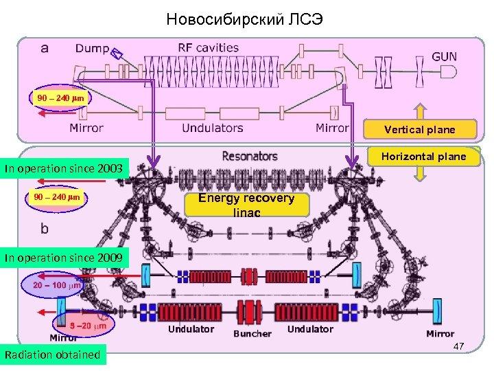 Новосибирский ЛСЭ 90 – 240 mm Vertical plane Horizontal plane In operation since 2003