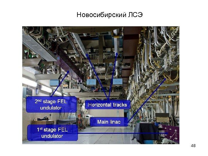Новосибирский ЛСЭ 48
