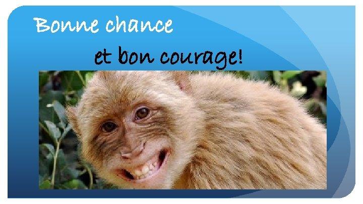 Bonne chance et bon courage!