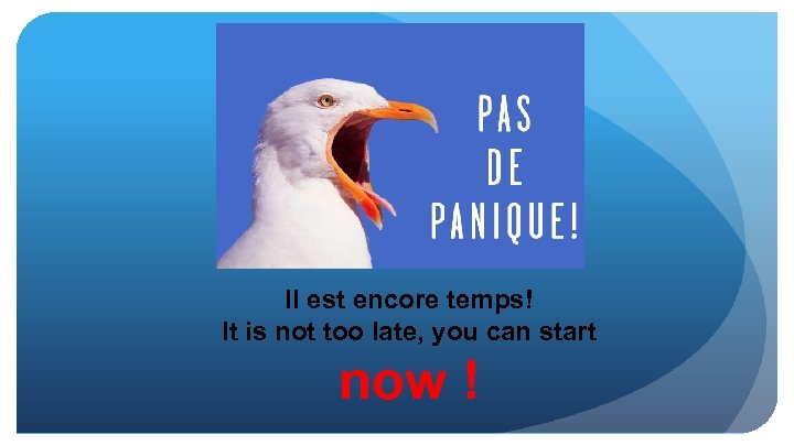 Il est encore temps! It is not too late, you can start now !