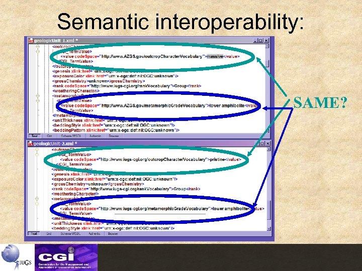 Semantic interoperability: SAME?