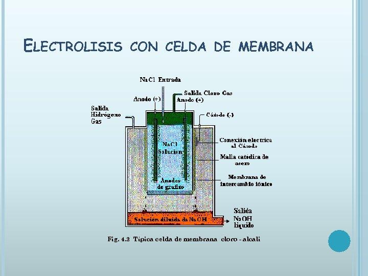 ELECTROLISIS CON CELDA DE MEMBRANA Fig. 4. 2 Típica celda de membrana cloro -
