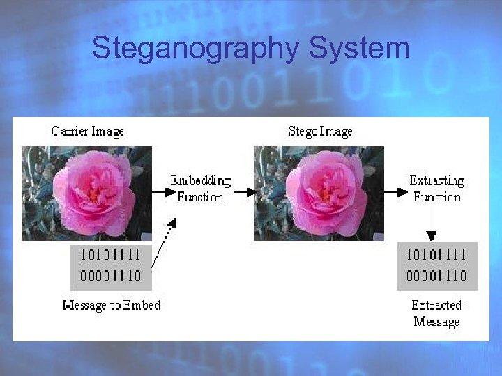 Steganography System
