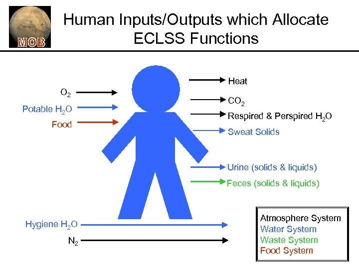 Human Inputs/Outputs which Allocate ECLSS Functions Heat O 2 Potable H 2 O Food