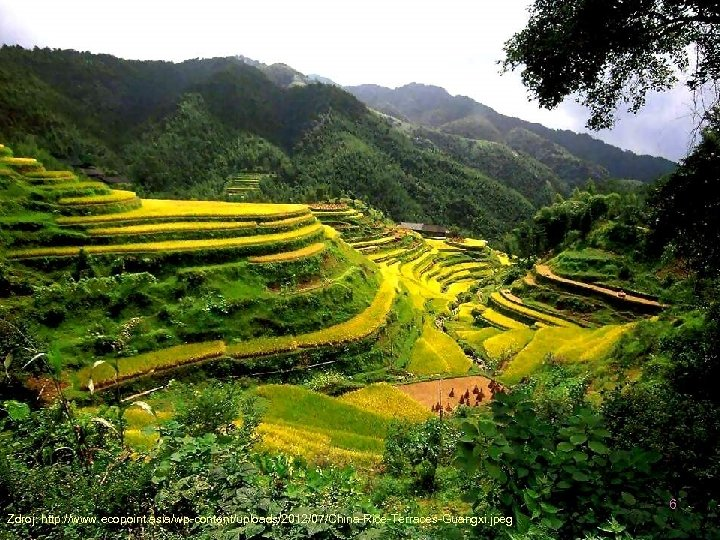 6 Zdroj: http: //www. ecopoint. asia/wp-content/uploads/2012/07/China-Rice-Terraces-Guangxi. jpeg