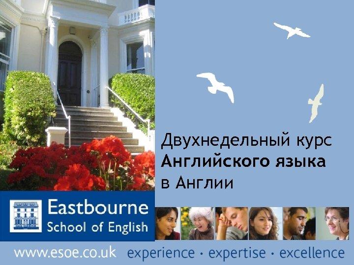 Двухнедельный курс Английского языка в Англии