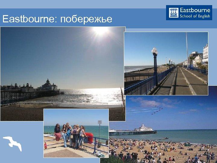 Eastbourne: побережье