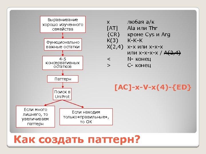 Выравнивание хорошо изученного семейства Функционально важные остатки x [AT] {CR} K(3) X(2, 4) 4