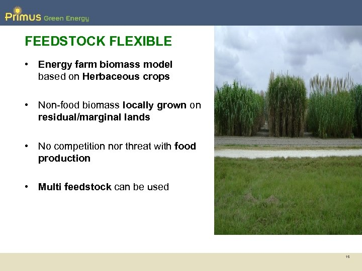 FEEDSTOCK FLEXIBLE • Energy farm biomass model based on Herbaceous crops • Non-food biomass