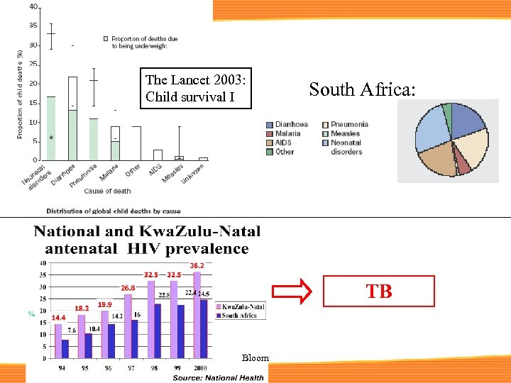 The Lancet 2003: Child survival I South Africa: TB Bloom