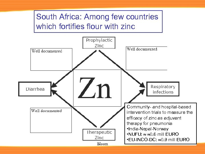 South Africa: Among few countries which fortifies flour with zinc Bloom Community- and hospital-based