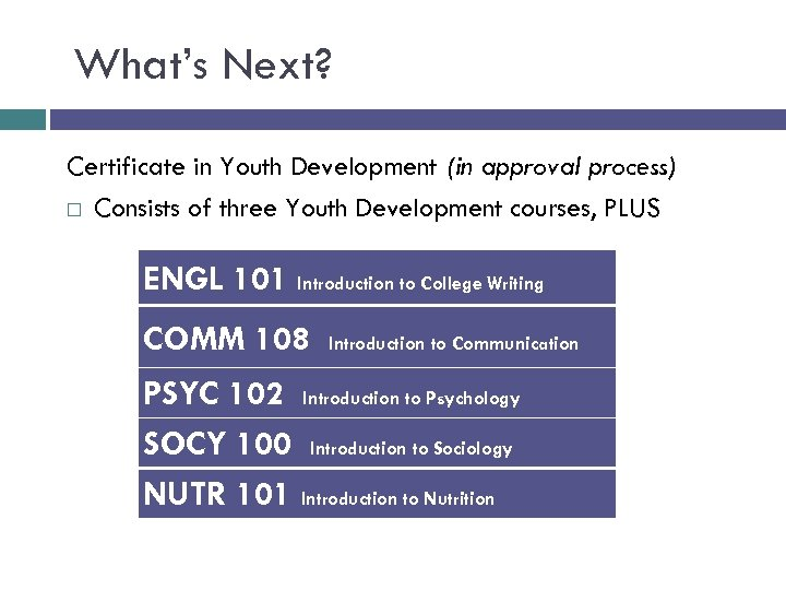What's Next? Certificate in Youth Development (in approval process) Consists of three Youth Development