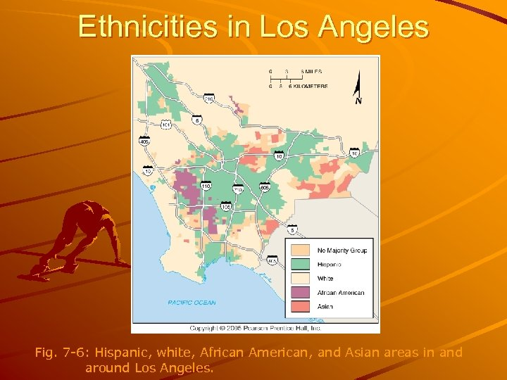 Ethnicities in Los Angeles Fig. 7 -6: Hispanic, white, African American, and Asian areas