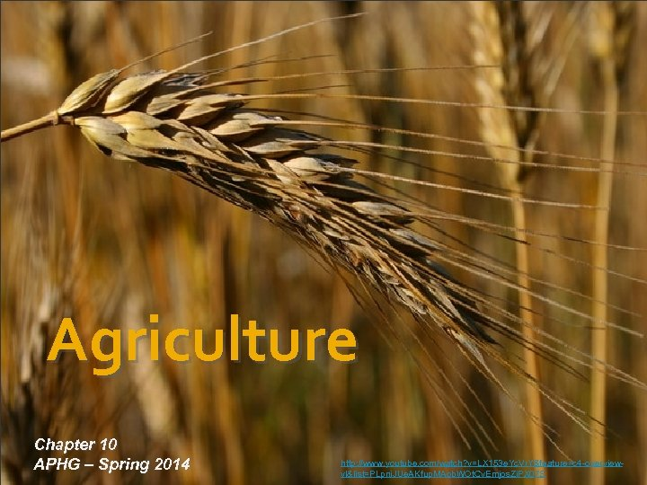 Agriculture Chapter 10 APHG – Spring 2014 http: //www. youtube. com/watch? v=LX 153 e.
