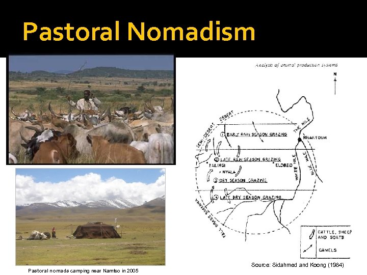 Pastoral Nomadism Pastoral nomads camping near Namtso in 2005 Source: Sidahmed and Koong (1984)