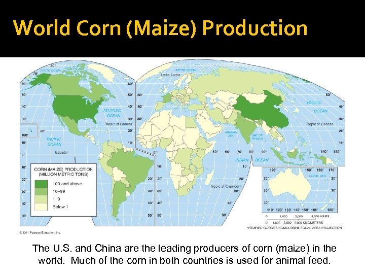 World Corn (Maize) Production The U. S. and China are the leading producers of