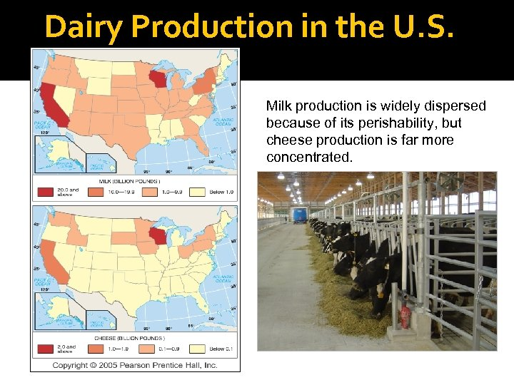 Dairy Production in the U. S. Milk production is widely dispersed because of its