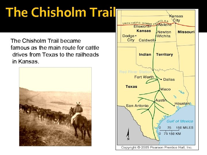 The Chisholm Trail became famous as the main route for cattle drives from Texas