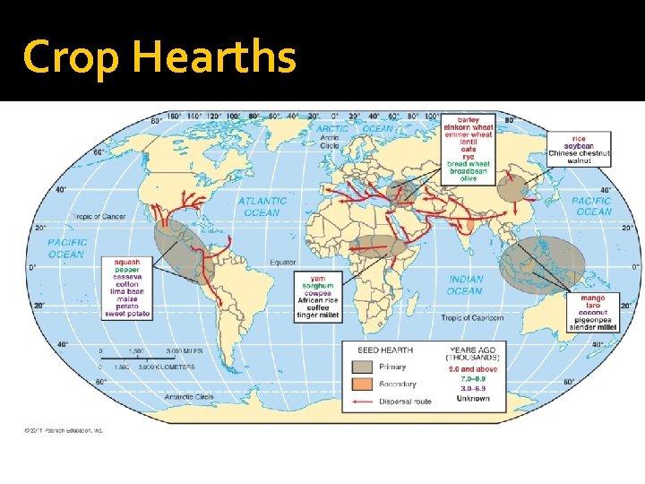 Crop Hearths