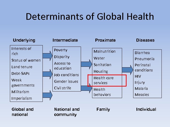 Determinants of Global Health Underlying Proximate Diseases Poverty Malnutrition Disparity Water Land tenure Access