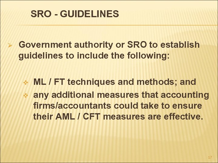 SRO - GUIDELINES Ø Government authority or SRO to establish guidelines to include the