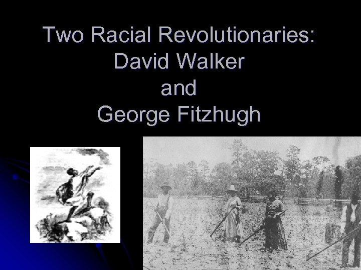 Two Racial Revolutionaries: David Walker and George Fitzhugh