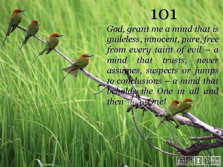 101 God, grant me a mind that is guileless, innocent, pure, free from every
