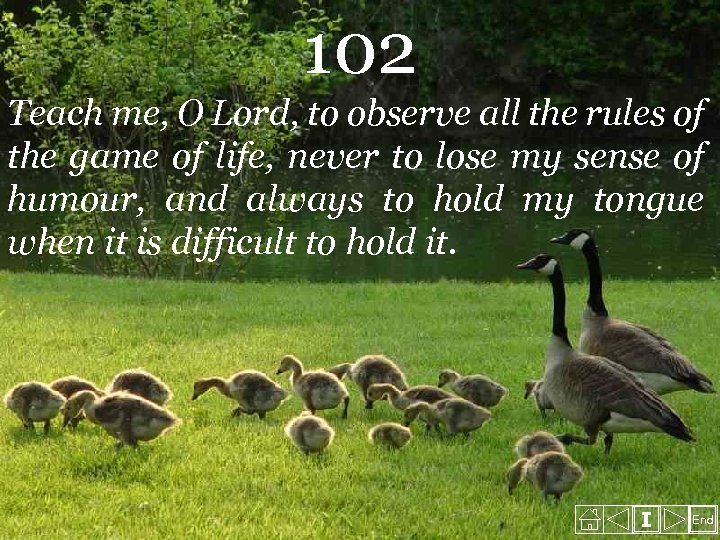 102 Teach me, O Lord, to observe all the rules of the game of