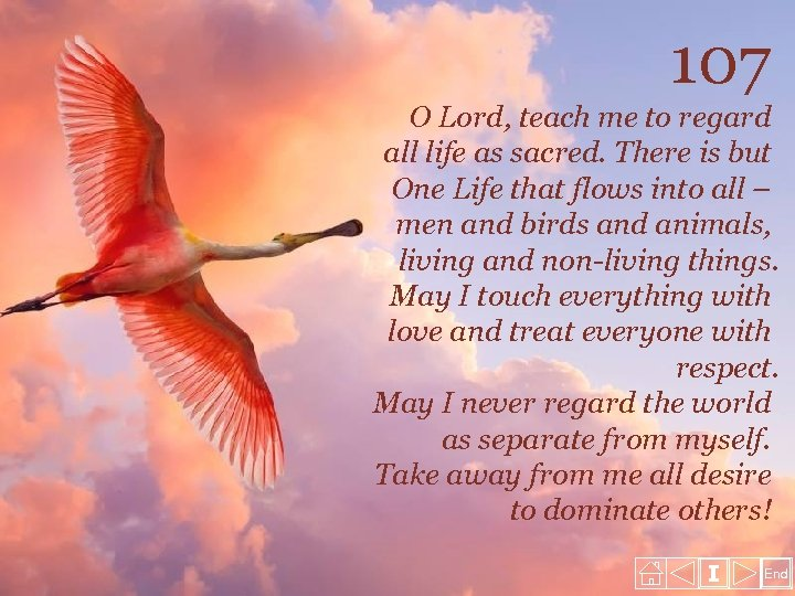 107 O Lord, teach me to regard all life as sacred. There is but