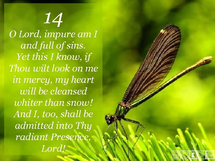 14 O Lord, impure am I and full of sins. Yet this I know,
