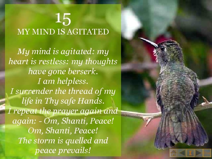 15 MY MIND IS AGITATED My mind is agitated: my heart is restless: my