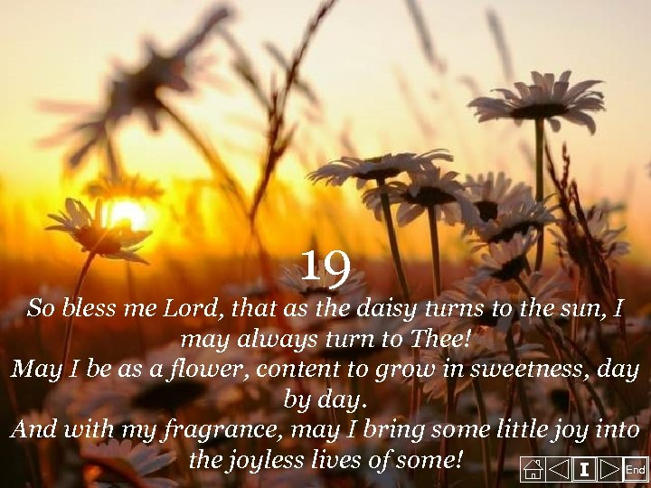 19 So bless me Lord, that as the daisy turns to the sun, I