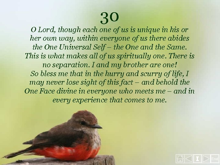 30 O Lord, though each one of us is unique in his or her