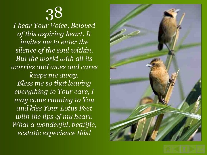 38 I hear Your Voice, Beloved of this aspiring heart. It invites me to